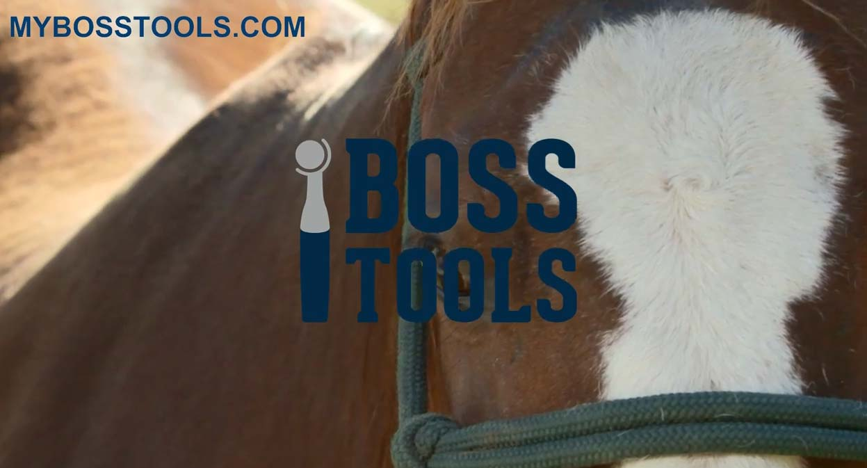 Manual-Hoof-Trim-versus-Hoof-Boss-Trim