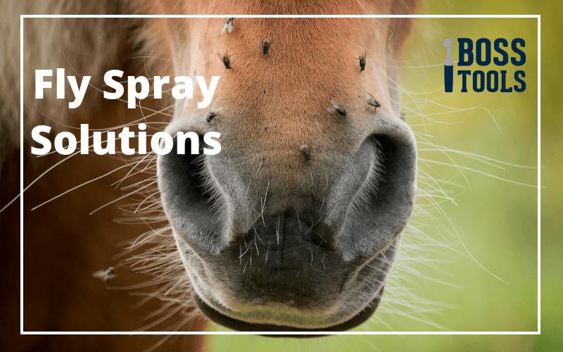 Flyspray Solutions
