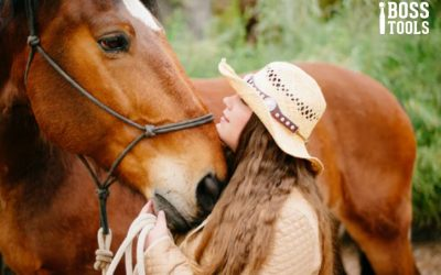 How to Choose a Veterinarian for Your Horse
